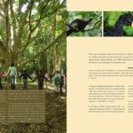 Lucca Cultura e Tecnologia - livro Parques e Reservas - pags-g