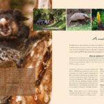 Lucca Cultura e Tecnologia - livro Parques e Reservas - pags-h
